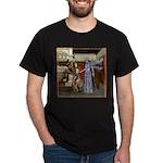 AKSC - Fairy Queen's Palace Dark T-Shirt