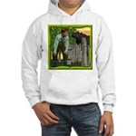 Black Sheep N Boy Hooded Sweatshirt