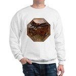 Flight of the Eagle Sweatshirt