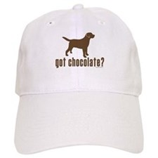 got chocolate lab? Baseball Cap