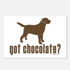 got chocolate lab? Postcards (Package of 8)