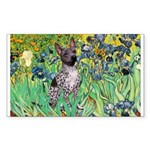 Irises-Am.Hairless T Sticker (Rectangle)