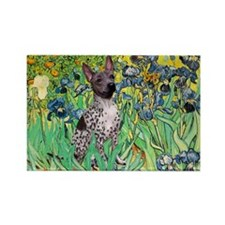 Irises-Am.Hairless T Rectangle Magnet