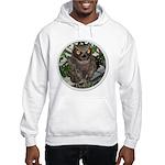 The Wise Old Owl Hooded Sweatshirt