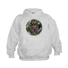 The Wise Old Owl Hoodie