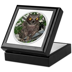 The Wise Old Owl Keepsake Box