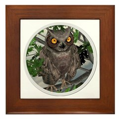 The Wise Old Owl Framed Tile