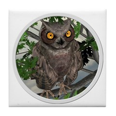The Wise Old Owl Tile Coaster