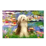 Lilies / Bearded Collie Postcards (Package of 8)