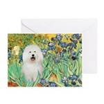 Irises & Bolognese Greeting Cards (Pk of 10)