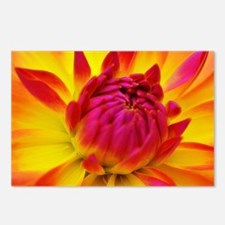 Ecstatic Postcards (Package of 8)