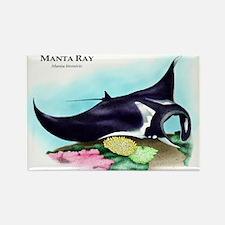 Manta Ray Rectangle Magnet