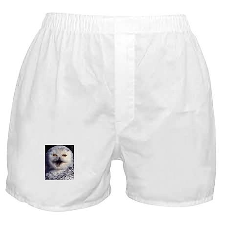 Snow Owl Boxer Shorts