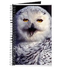 Snow Owl Journal