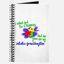 Blessing 2 (Autistic Granddaughter) Journal