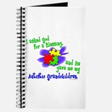 Blessing 2 (Autistic Grandchildren) Journal