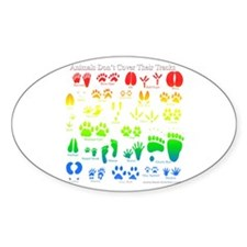 Colorful Rainbow Oval Decal