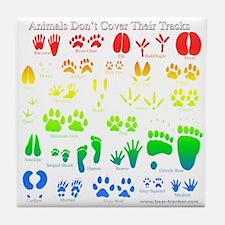 Colorful Rainbow Tile Coaster