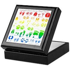 Colorful Rainbow Keepsake Box