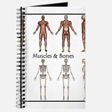 Muscles and Bones Journal