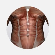 Muscle Chest Ornament (Round)