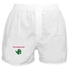 Tommyosaurus Rex Boxer Shorts