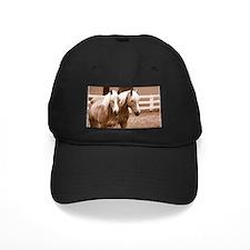 Haflinger Horse Baseball Hat