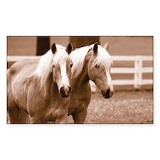 Haflinger Horse Rectangle Decal