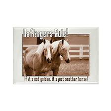 Haflinger Horse Rectangle Magnet