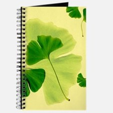 Ginkgo Biloba Leaves Journal