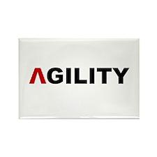 A-Frame Agility Rectangle Magnet