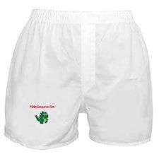 Melindaosaurus Rex Boxer Shorts