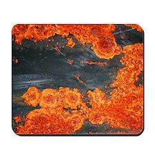 Topological Rust<br> Mousepad