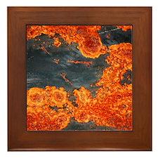 Topological Rust <br>Framed Tile
