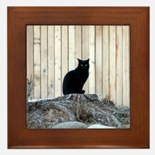 Chimayo Cat<br> Framed Tile