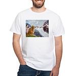 Golden Creation White T-Shirt