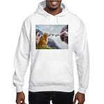 Golden Creation Hooded Sweatshirt
