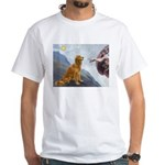 Creation (#2) & Golden White T-Shirt
