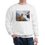 Creation (#2) & Golden Sweatshirt