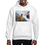 Creation (#2) & Golden Hooded Sweatshirt