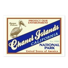 Channel Islands (Pelican) Postcards (Package of 8)