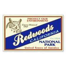 Redwoods (Owl) Rectangle Decal