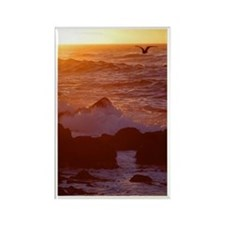 Sunset in Flight Rectangle Magnet