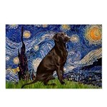 Starry Chocolate Lab Postcards (Package of 8)