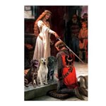 The Accolade & Lab Trio Postcards (Package of 8)