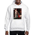 The Accolade & Lab Trio Hooded Sweatshirt