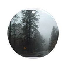 Storm in Oak Creek Canyon Ornament (Round)