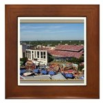 Cotton Bowl #1 Framed Tile