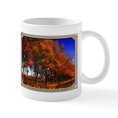 White Rock Lake Mug