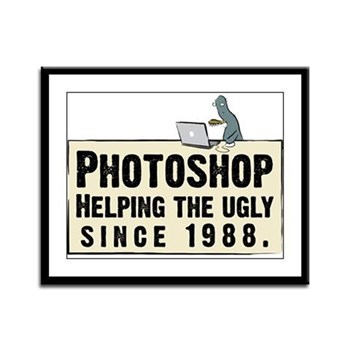 Photoshop - Helping the Ugly Framed Panel Print